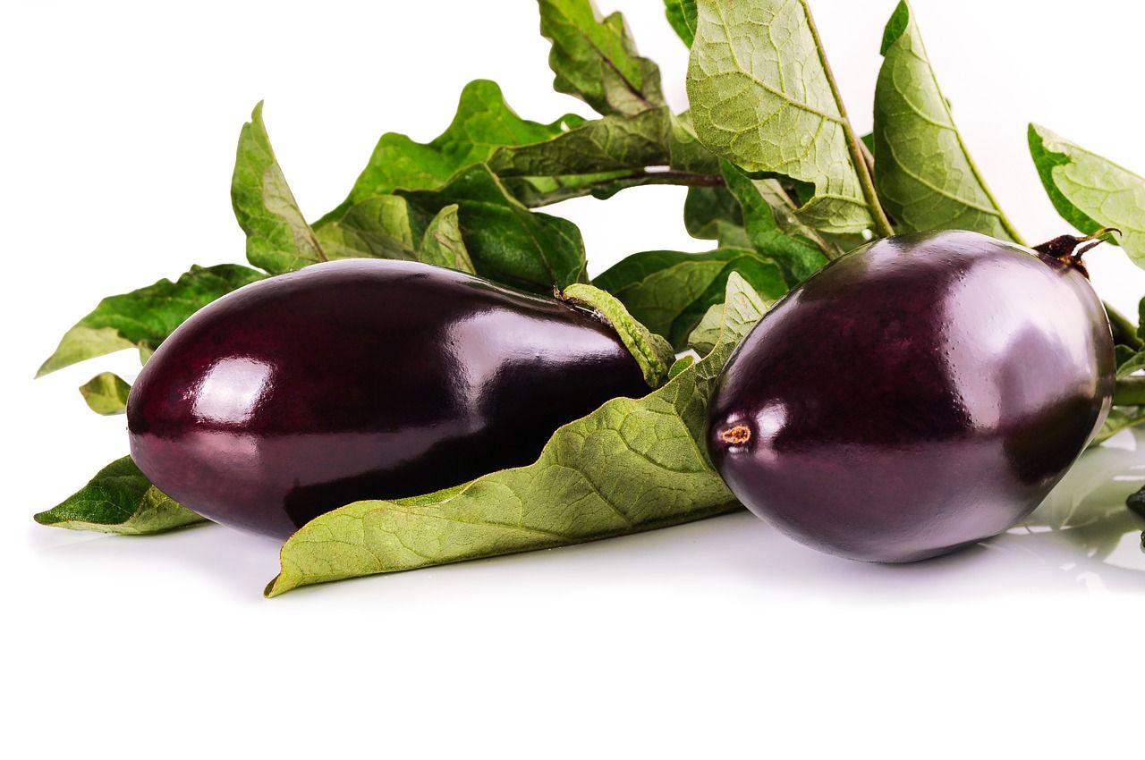 μελιτζάνες-eggplants
