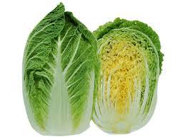 λάχανο κινέζικο-lachano kineziko