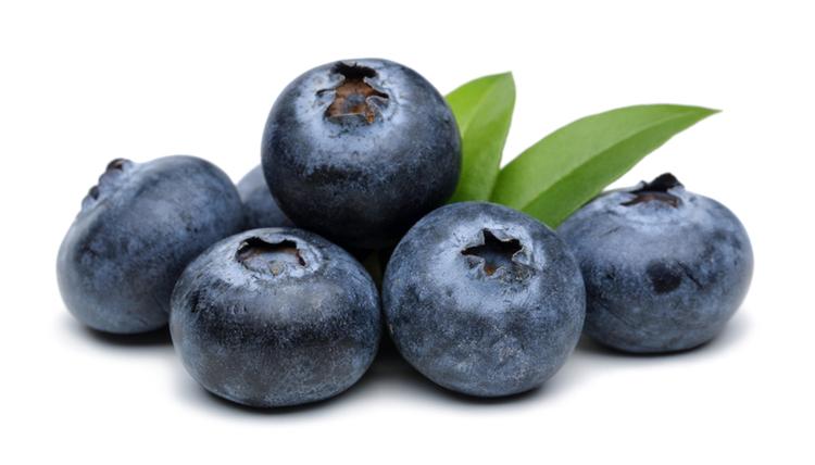 μύρτιλα-bluberries