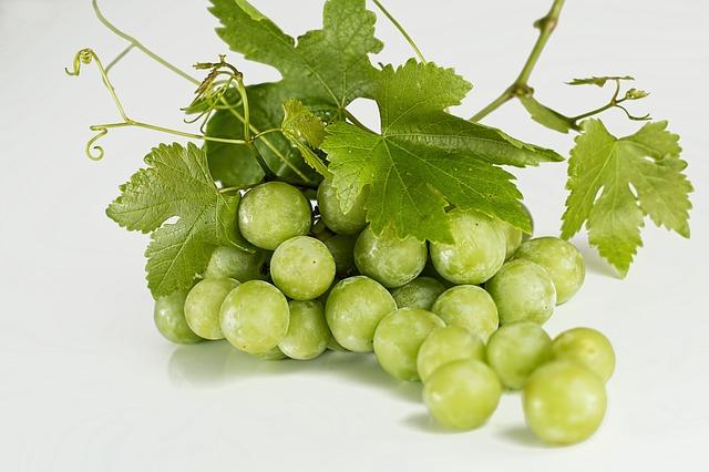 σταφύλια-grapes